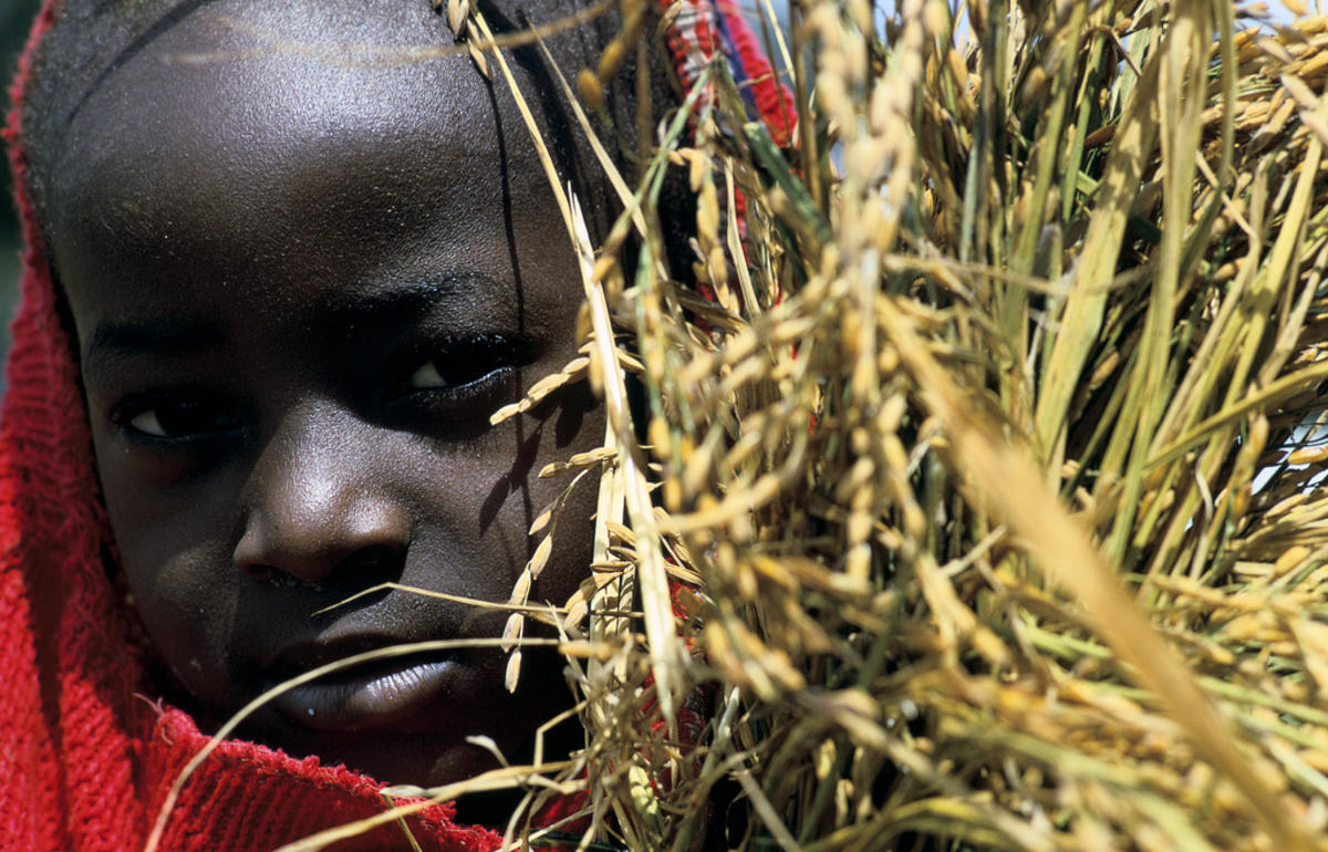 Portrait of child hiding behind grains. Senegal by World Bank Photo Collection via Flickr Creative Commons