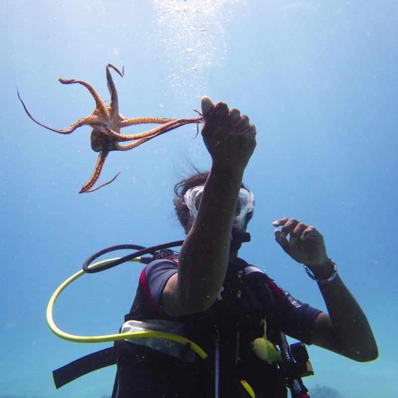 """Underwater"" Photo Credit Johan J.Ingles-Le Nobel on Flickr Creative Commons"