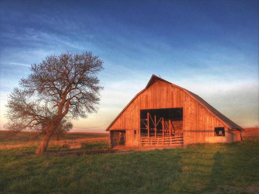 """Old Nebraska Barn in Early Morning Light"" by John Carrel"