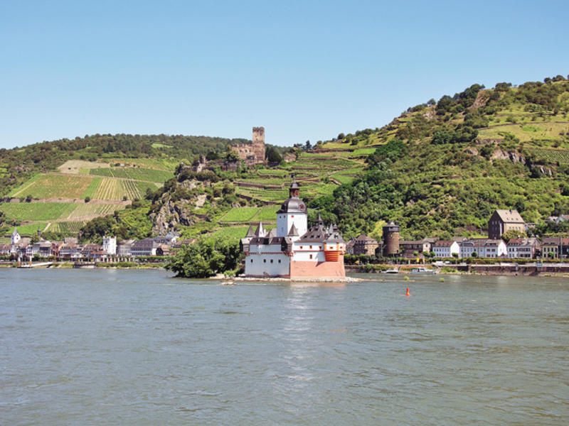 Nature upper middle rhine valley 3