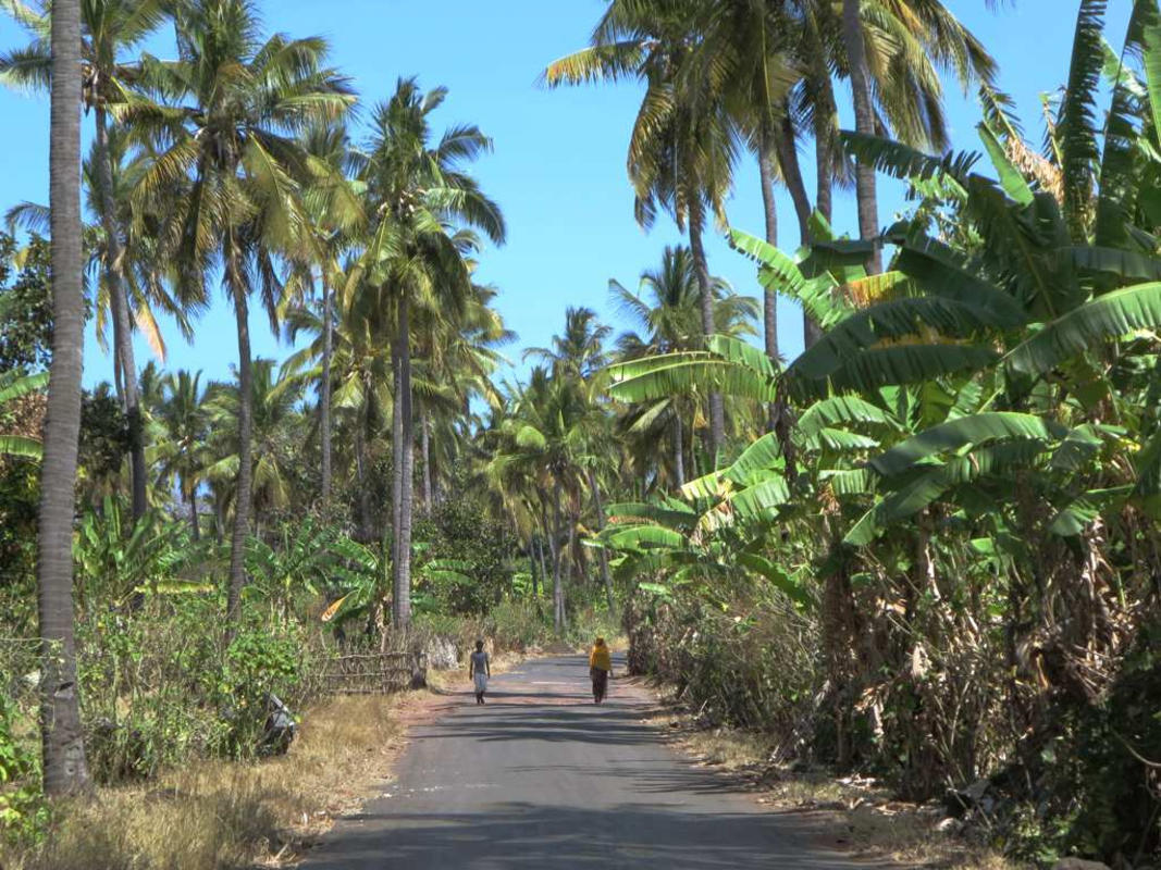 Highway Around Grande Comore Photo by David Stanley via Flickr Creative Commons