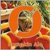 42194 n gne   pumpkin ale
