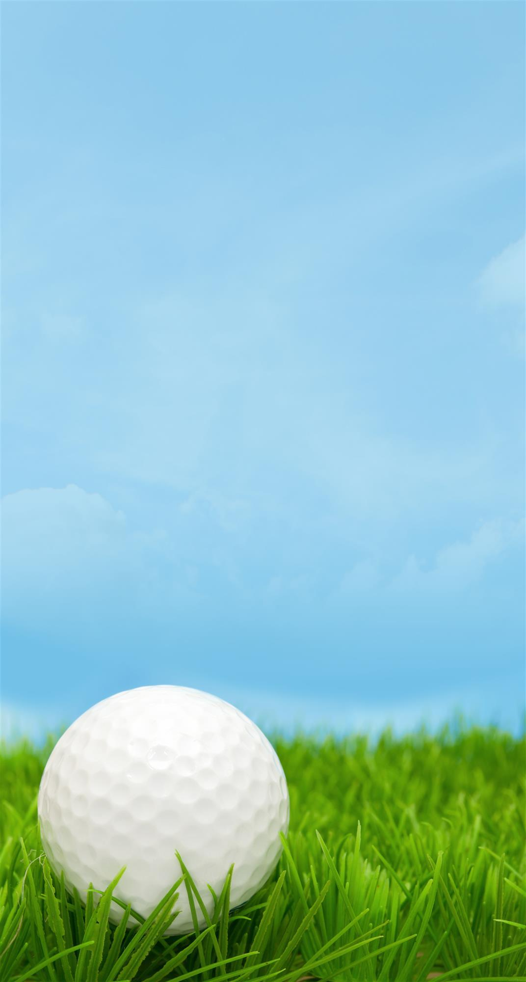 Golf Ball Landing On Grass
