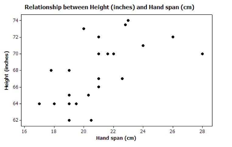 foot size and height relationship