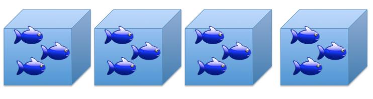 Fish_tanks__b3830cd09fe30cb111af56b752441a03