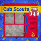 Blue___gold_cubs-001_medium