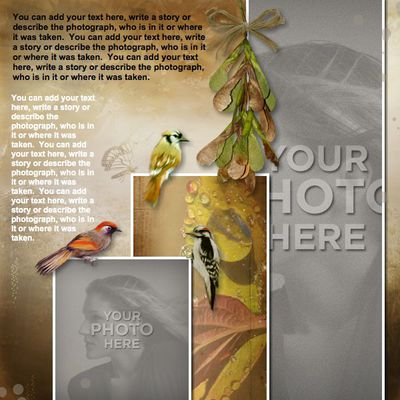 Nature_s_beauty_template-008