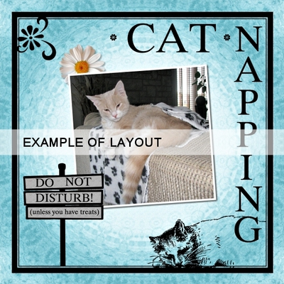 Cat_overlays_2-02