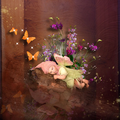 Butterflydream_kit_3