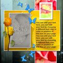 Butterfly_dream_template_2-001_small