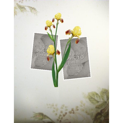 11x8_spring_template_2-004