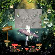 Enchanted_1_photobook-001_medium