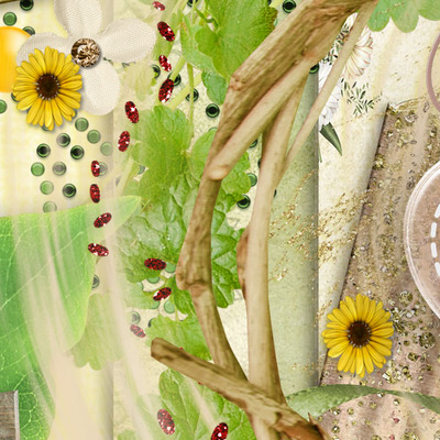 Dreamin_of_daisies_pack-2