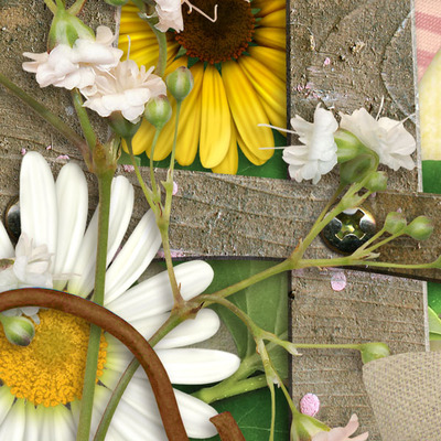 Dreamin_of_daisies_pack-5