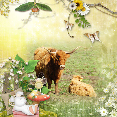 Dreamin_of_daisies_pack-8