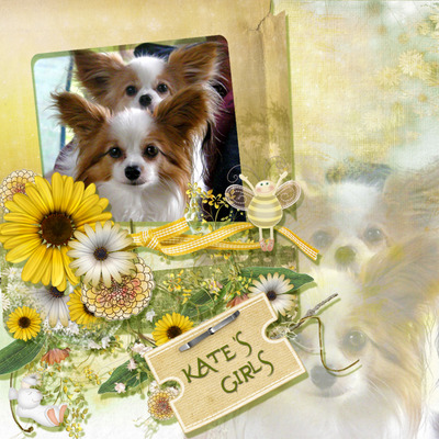 Dreamin_of_daisies_pack-11