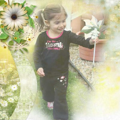 Dreamin_of_daisies_pack-14