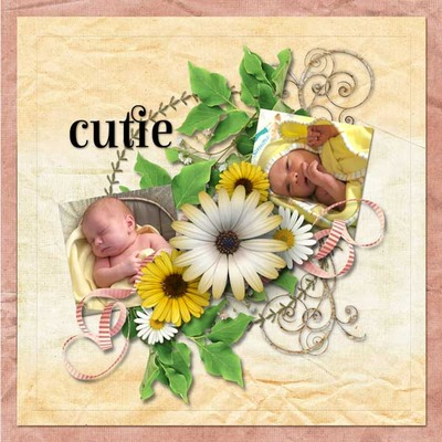 Dreamin_of_daisies_pack-18