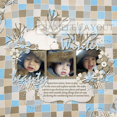 Winter-beauty-layout_1