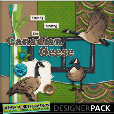 Canadian-geese-01