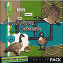 Canadian-geese-01_small