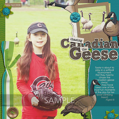 Canadiangeese-anna