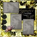 Acanthus_wisdom_template-001_small