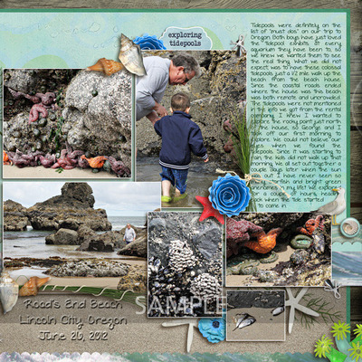 Totally-tidepools-right