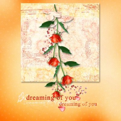 Dreaming_of_you_photobook-001