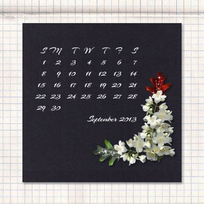 Black_and_white_calendar_2013-019