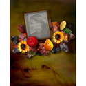 11x8_autumntime_book-001_small
