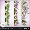 Butterflydsign_princessemariana_borders_pv_memo_small