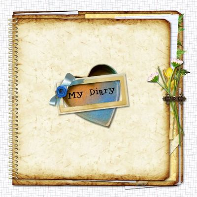 My_diary-_covers_template-004
