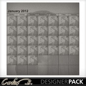 2012_12x12_full_template2-001_medium