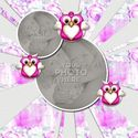 Owls_template-002_small