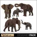 Elephantfamily-1_small