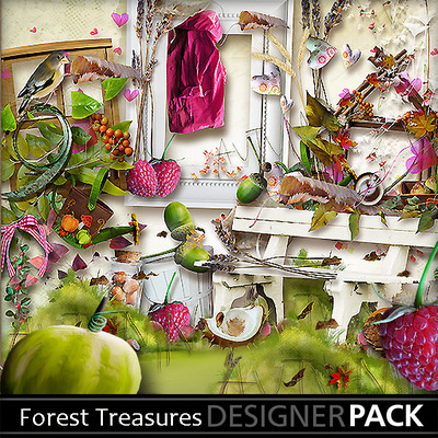 Forest_treasures__1_
