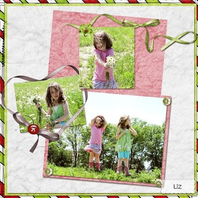 Cherry_lane_bundle_24