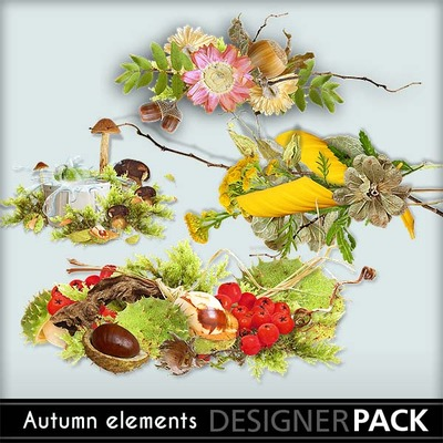 Autumn_elements