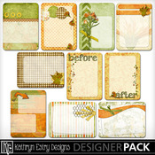 Joancanyonjournalcards01_medium