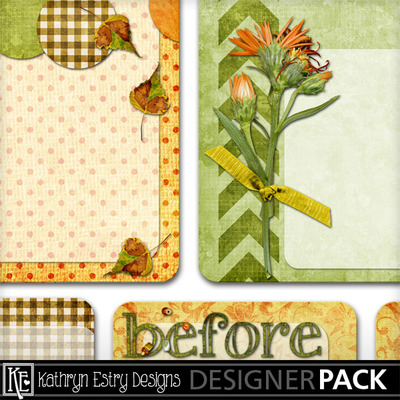 Joancanyonjournalcards04