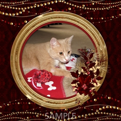 Gold_red_christmas_frames-02