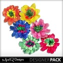 Colourful_flowers_5_small