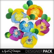 Pansies_1_medium