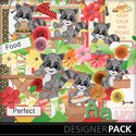 Racoon_picnic-kit_small
