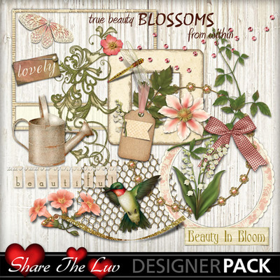 Beautyblossoms_elements