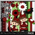 Little_lady_bug_small