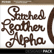 C4m_stitchbrownleather_alpha_medium