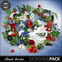 Sa-sweet_berries_pv01_small