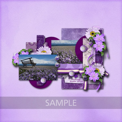 Ag_perfectpurple_lo2_sample